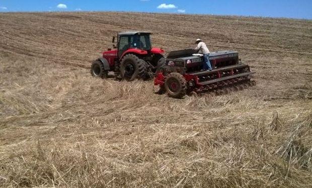 En el nivel país, ayer la consultora AgRural estimó el progreso de la siembra brasileña de soja 2015/2016 sobre el 31% de la superficie prevista.