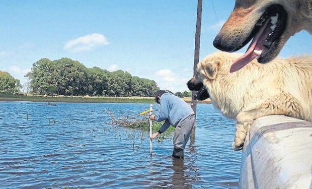 En la zona de 30 de Agosto, en el noroeste bonaerense, hay cientos de hectáreas bajo agua. Foto: Gentileza G. Villagra