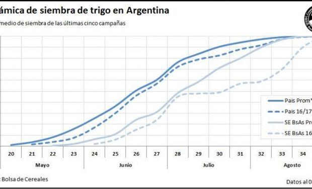 Dinámica de la siembra de trigo. Fuente: Bolsa de Cereales de Buenos Aires.