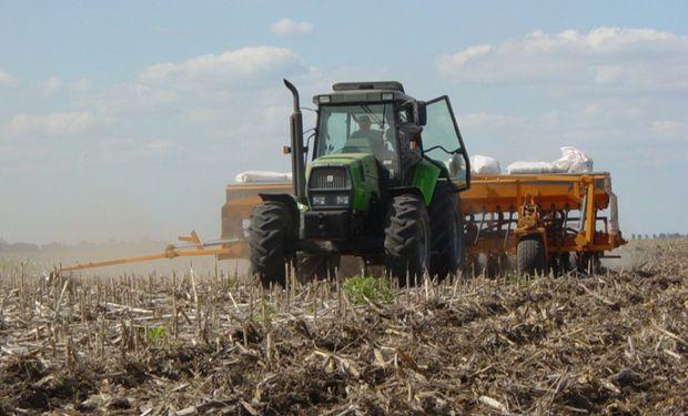 Trigo: el progreso de siembra alcanzó un 36,6 %.
