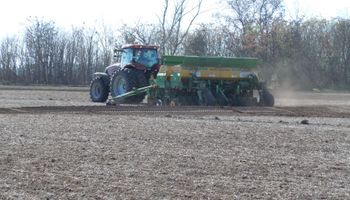 Un buen año para sembrar trigo con tecnología