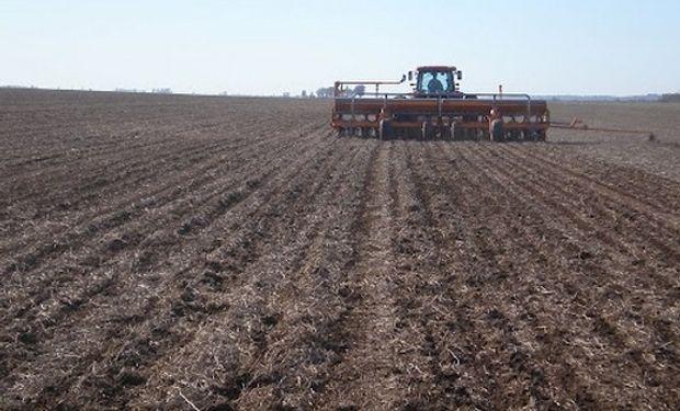 La BCR estima una superficie de 3,5 millones de hectáreas.