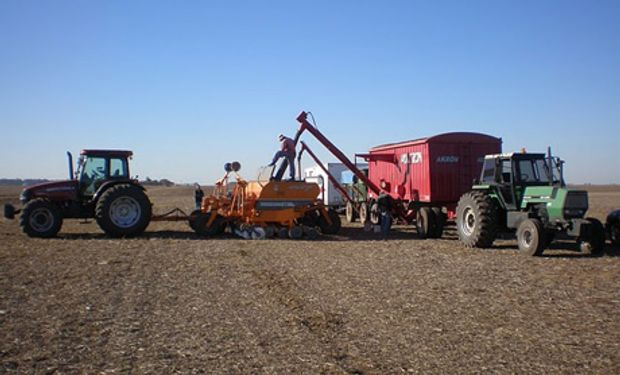 En la zona sudoeste bonaerense, el área de siembra de trigo caería un 16% con respecto al ciclo 2013/15 para ubicarse en 110.000 hectáreas.