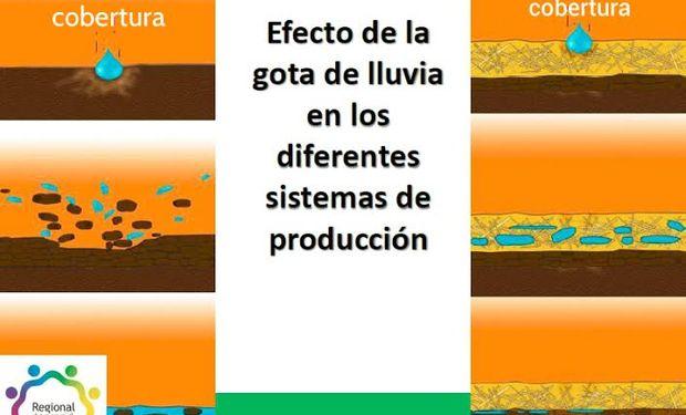 La Siembra Directa es la práctica de cultivar la tierra sin ararla previamente y con la presencia de una cobertura permanente del suelo.