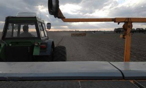 Todas las hectáreas de maíz se siembran con equipos de dosificación variable.