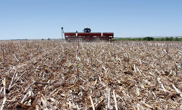 Hoy, ningún gran productor en el Chaco Seco duda si desmontar o no; la gran disyuntiva es qué cultivar: maíz o soja. Foto: gentileza Andrés Pérez Moreno