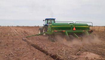 Soja: en apenas siete días se sembraron más de 2,7 millones de hectáreas