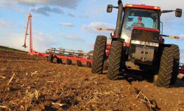 Maíz: la siembra en Estados Unidos logró cubrir un 6%.