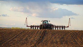 El foco del mercado de granos se traslada a la campaña de Estados Unidos