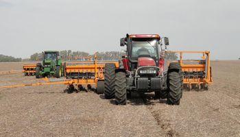 El maíz perdió hasta un 30% de poder de compra contra los fertilizantes: duro impacto sobre la relación insumo producto