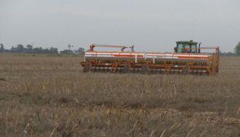 Prevén que volverá a caer la siembra total de granos