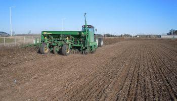 La humedad retrasa la siembra de trigo