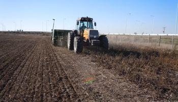 Empezó la siembra trigo en Entre Ríos