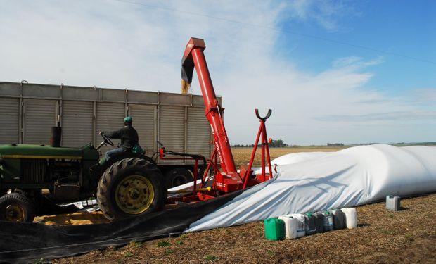 Se publicará una guía de denuncias que permitirá notificar delitos relacionados con el almacenaje y transporte de la cosecha.