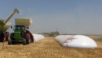 Actualizan el salario mínimo para la manipulación y almacenamiento de granos en San Luis