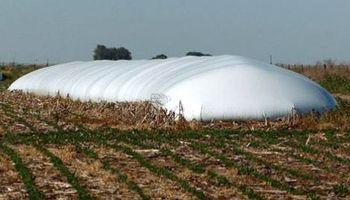 Silobolsa: una alternativa para la conservación de forraje