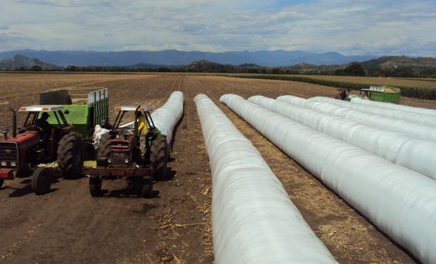 Se trata de una tecnología que permite guardar el grano o la planta cortada y picada, en una zona donde no crece el pasto en invierno.