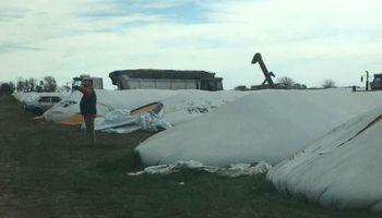 Vandalizaron 20 silo bolsas de Cargill y hay preocupación en la zona