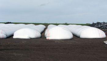 Liberaron nuevas compensaciones para sojeros del norte del país