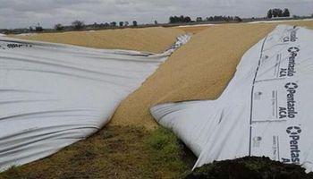 Destruyen 22 silobolsas con granos en Henderson