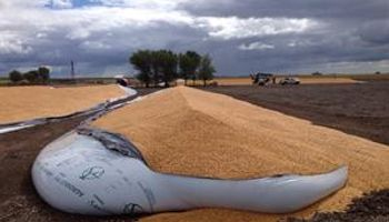 Llamativa destrucción de silos con granos en un campo pampeano