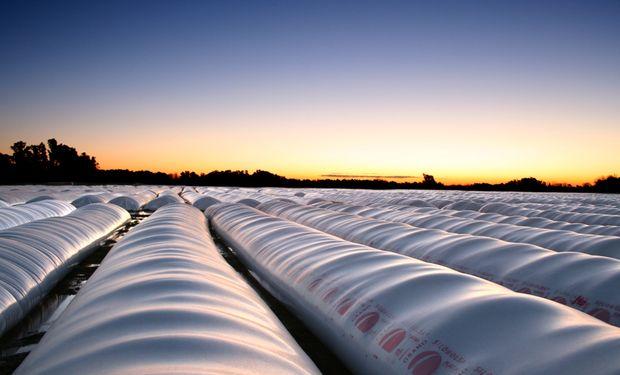 Hasta mediados de diciembre del 2014, se calculaba que unos 13 millones de toneladas de soja seguían en poder de los agricultores.