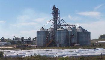 Uruguay: cosecha de granos desborda los silos