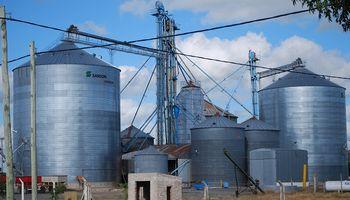 Cómo evitar el ataque de plagas en el almacenamiento de granos