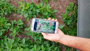 """La app que reemplazó """"la libretita""""  ya registró más de 1 millón y medio de hectáreas"""