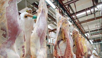 Sin barrera sanitaria, Neuquén espera una avalancha de carne