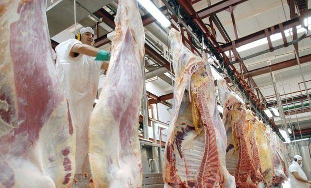 """""""Tenemos la posibilidad de exportar a Chile que en la actualidad importa carne de Paraguay"""", ministro José Brillo. Foto: LMNeuquén."""