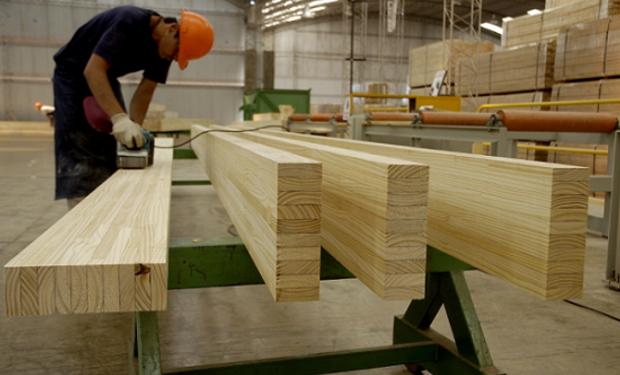 El relevamiento se llevó adelante con el fin de mejorar la competitividad de la industria argentina de la madera y el mueble.