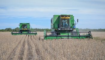 SISA: la AFIP emitió un comunicado en el arranque de la cosecha gruesa