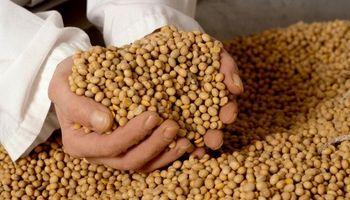 Empresa de productores pidió aprobar un sistema de control de Monsanto