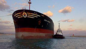 Un buque con 40 mil toneladas de harina de soja quedó varado frente a Puerto San Martín
