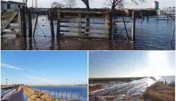 El agua no para: se agrava la situación en Trenque Lauquen