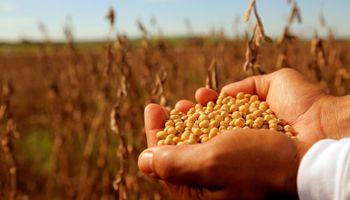 Comienza el debate por la ley de semillas