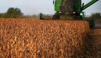 Acusan al Gobierno de estafar a los productores por no incluir las devoluciones en el presupuesto