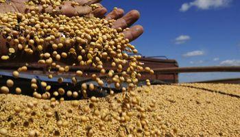 Diseñaron un software que garantiza la calidad de productos agroalimentarios ante exportadores