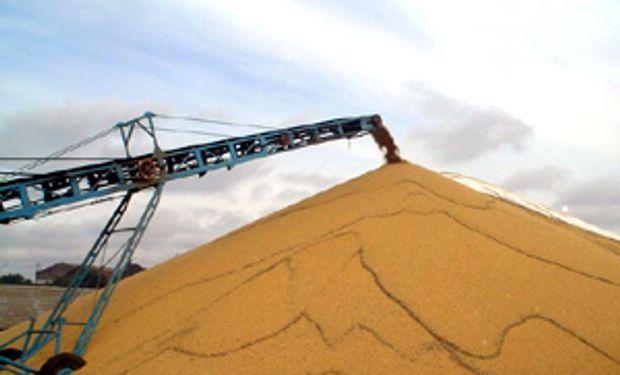 Los productores retienen el 35% de la soja a la espera de que se acelere la devaluación