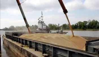 La soja quedaría excluida del impuesto a la importación