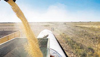 La caída del peso fuerza la retención de la soja