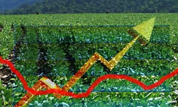 La soja local se recupera gracias a la mejora externa
