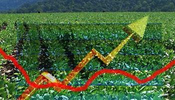 Mejora en la disposición a pagar por soja y maíz