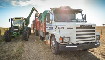 Por una menor superficie de maíz, se realizarían 16 mil viajes menos de camiones