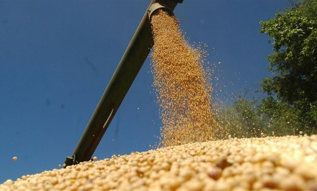 Los avances de la cosecha en Sudamérica suman presión a los precios de la soja en Chicago.