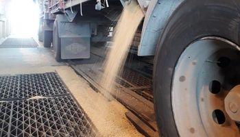 CARTEZ se suma al reclamo para que las exportadoras cumplan las condiciones de pago
