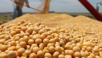Un productor rural de Las Vertientes consiguió récord de producción de soja