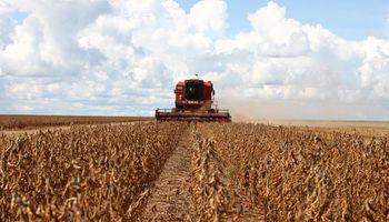 Brasil: lluvias demoran cosecha de soja