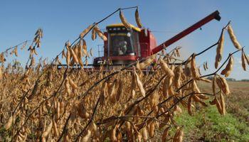 Brasil: Reducen estimación de soja a 87,5 M. Tn.